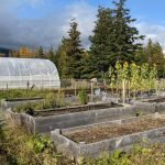 Five northwest B.C. First Nation communities to benefit from poverty-reduction funds